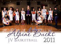 alpine basketball 2011-12